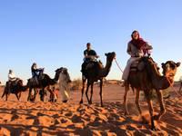 High School auf See: Kamelreiten in Marokko