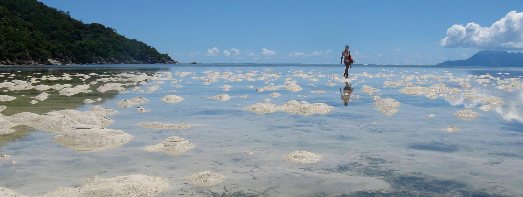 Auslandsaufenthalt Seychellen