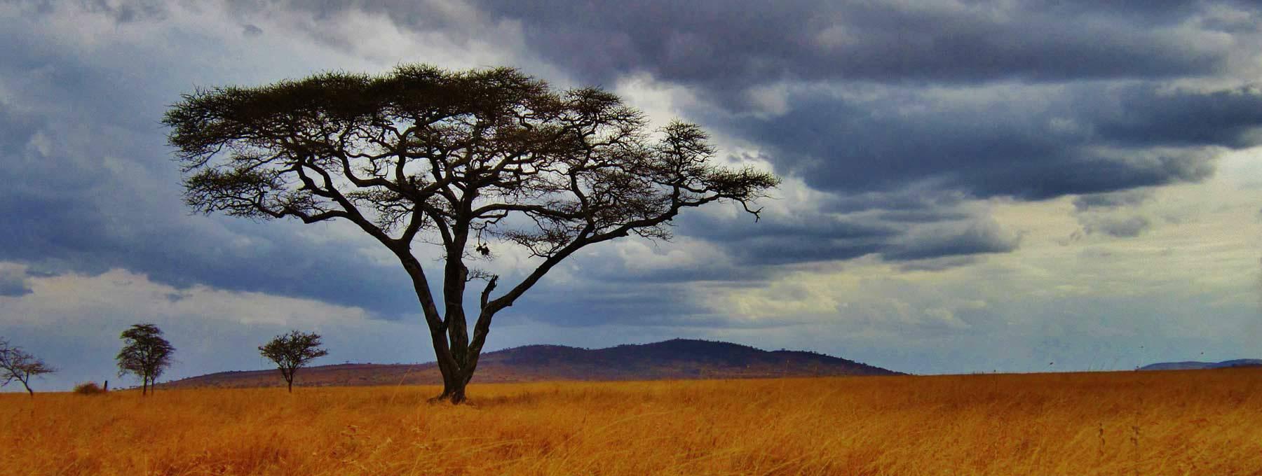 Auslandsaufenthalt Tansania