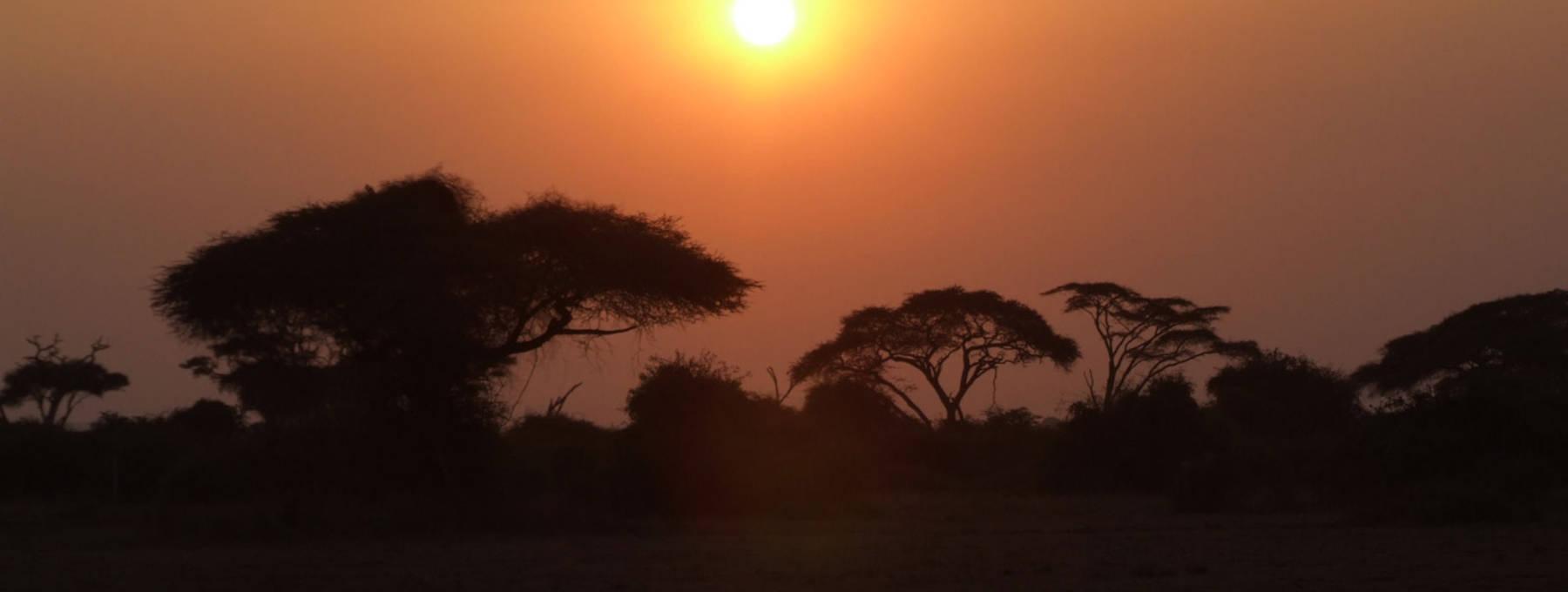 Auslandsaufenthalt Kenia
