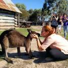 Fotowettbewerb 2014: Blanka Backus, Au-pair Australien (3. Platz Work, Study & Travel)
