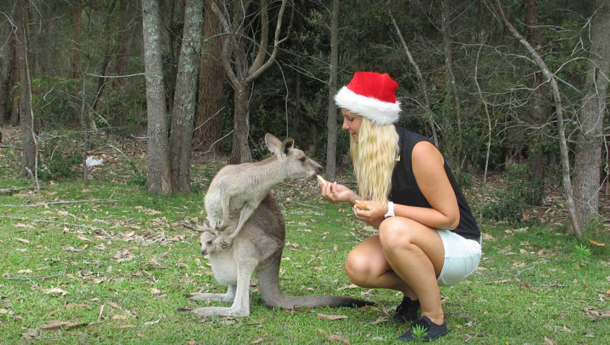 High School Travel-Tipp Weihnachten in Australien