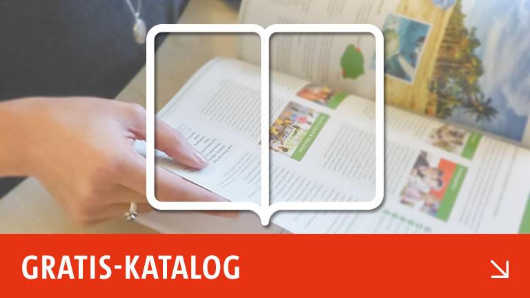 Stepin Katalog