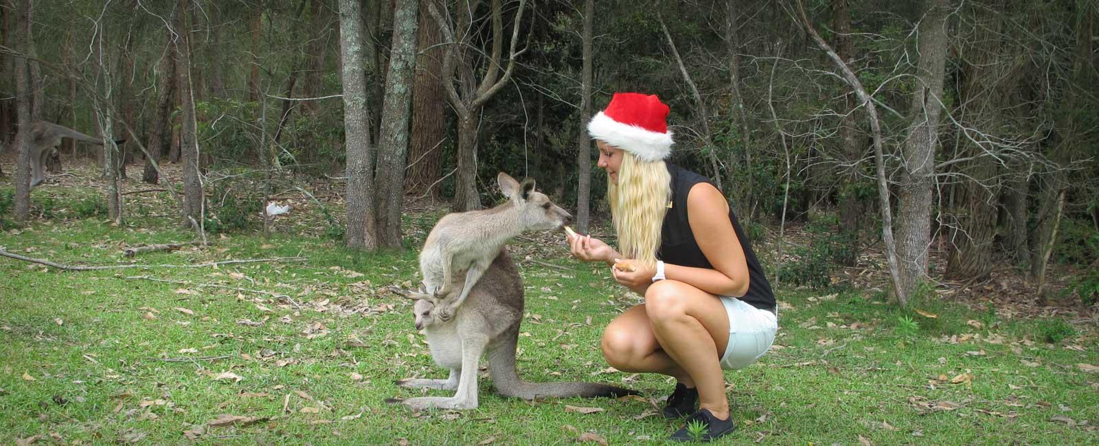 Weihnachten in Australien