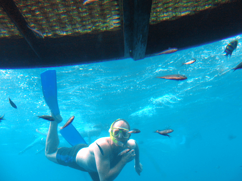 Daniel in Australien #7: Schnorcheln am Great Barrier Reef