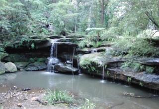 Daniel in Australien #14: Geocaching – Schnitzeljagd 2.0 in Sydney