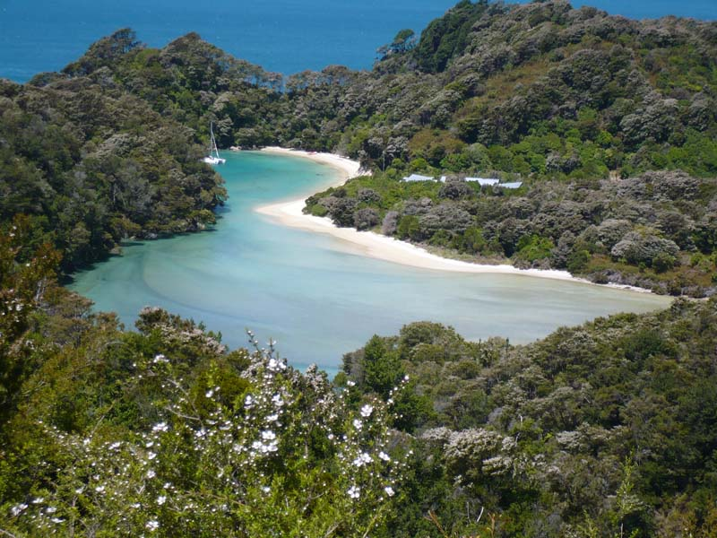 Eine malerische Bucht im Abel Tasman