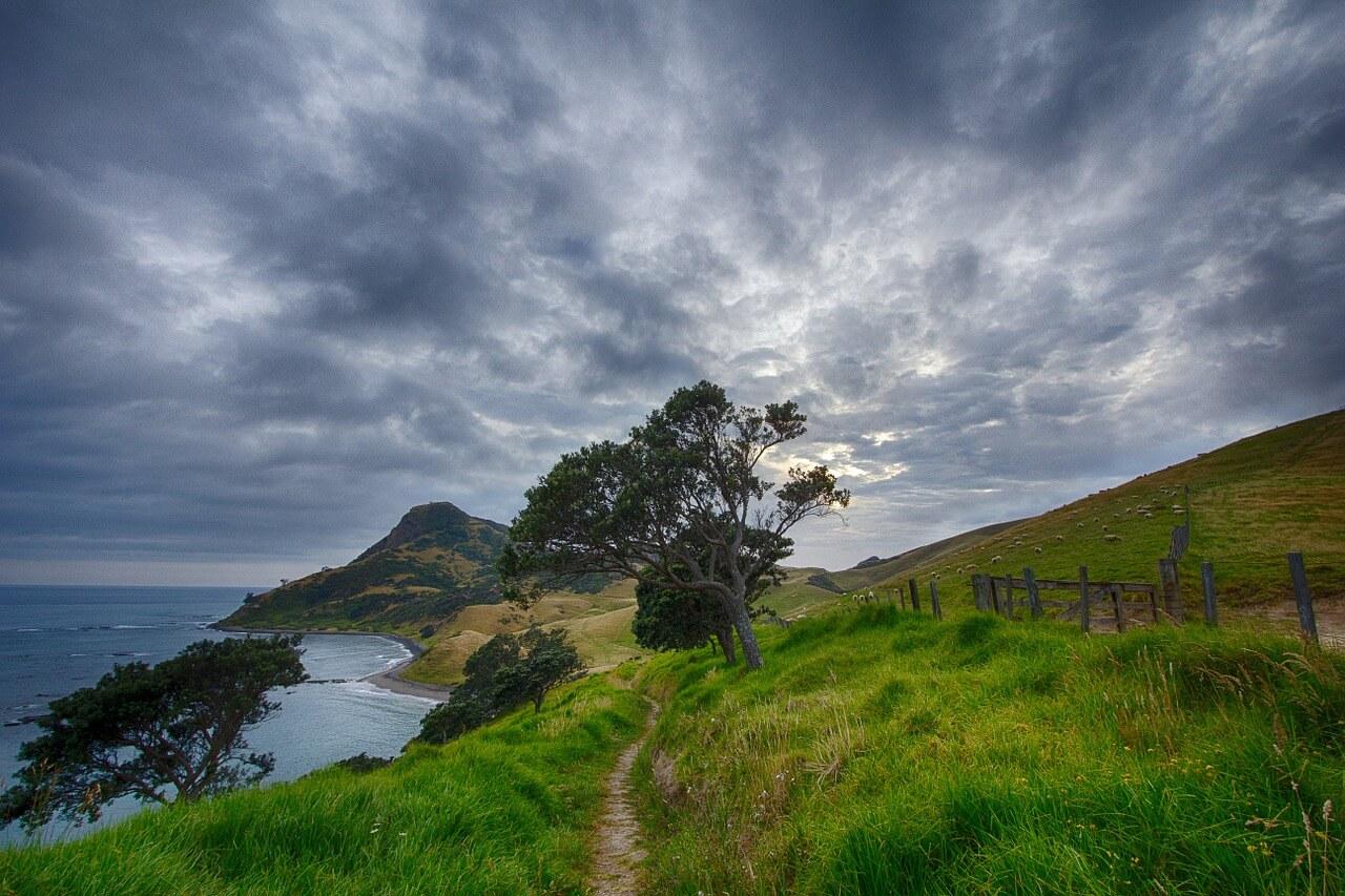 Eine neuseeländische Küste