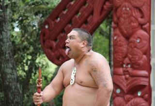 Rezension: Maori und Gesellschaft