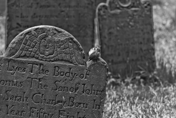 Kleiner Friedhof in New York