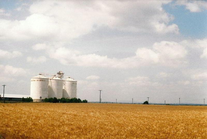 Getreidekammern auf dem Weg ins Outback