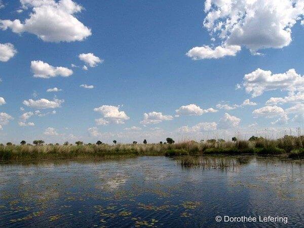 Weltneugier: Botswana - Bootstour Delta