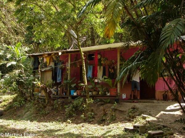 Cost Ricanisches Haus zwischen Palmen