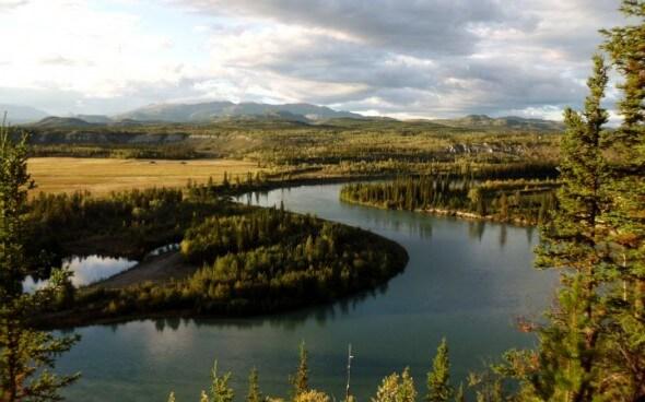 Flusslauf des Yukons
