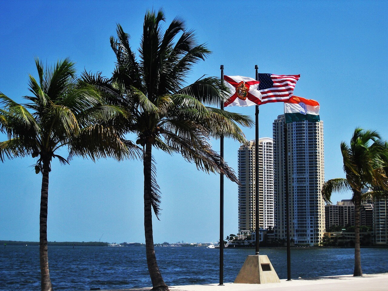 Palmen am Strand von Miami