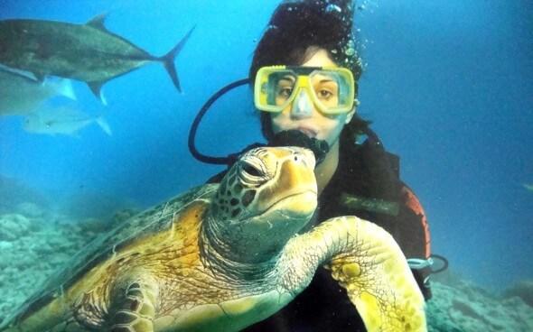 Jasmin am Great Barrier Reef mit einer Schildkröte