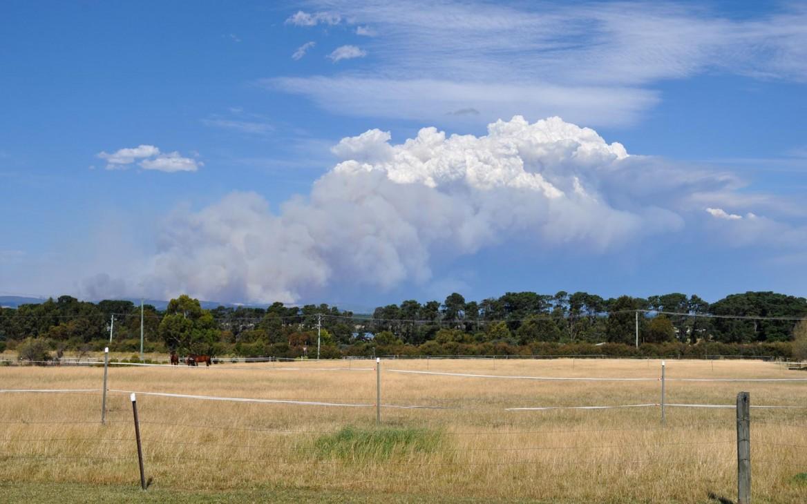Laura in Australien #2: Hitzewelle und Buschfeuer in Australien – und Laura mittendrin