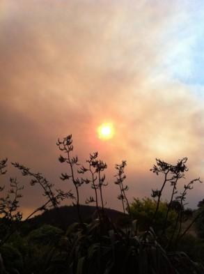 Durch Rauch verdeckte Sonne Tasmaniens