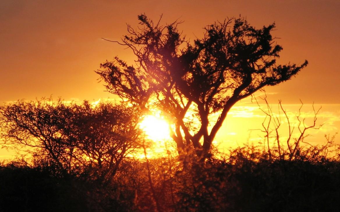 Afrika entdecken: der Stamm der Zulu