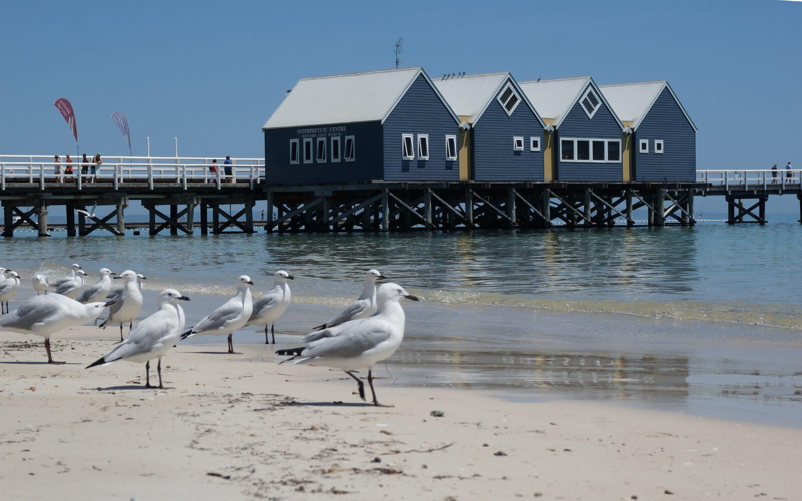 Ein Pier in Australien