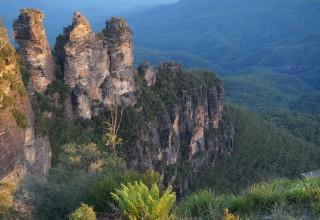 Eine Stepin-Reise nach Australien – Interview mit Barbara Seyfert-Joiner