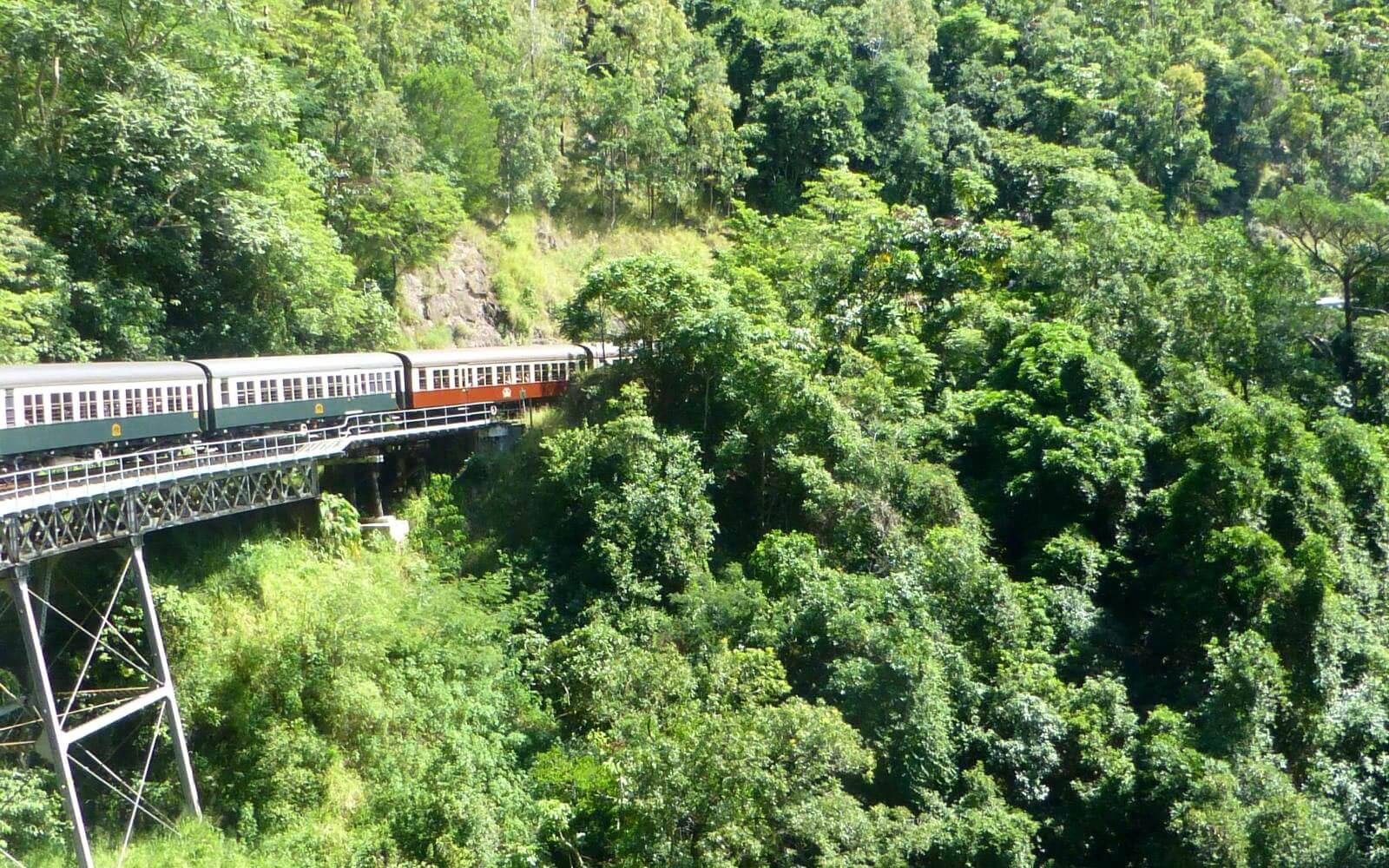 Bahn im Regenwald