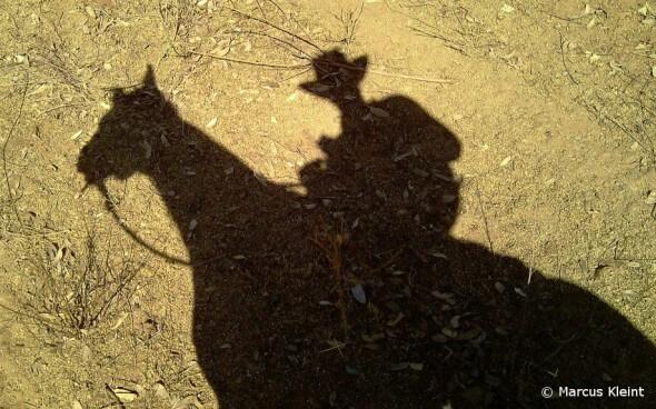 Farm & Travel Australien: Schatten eines Reiters