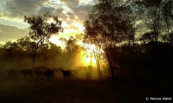 Farm and Travel Australien: Sonnenuntergang