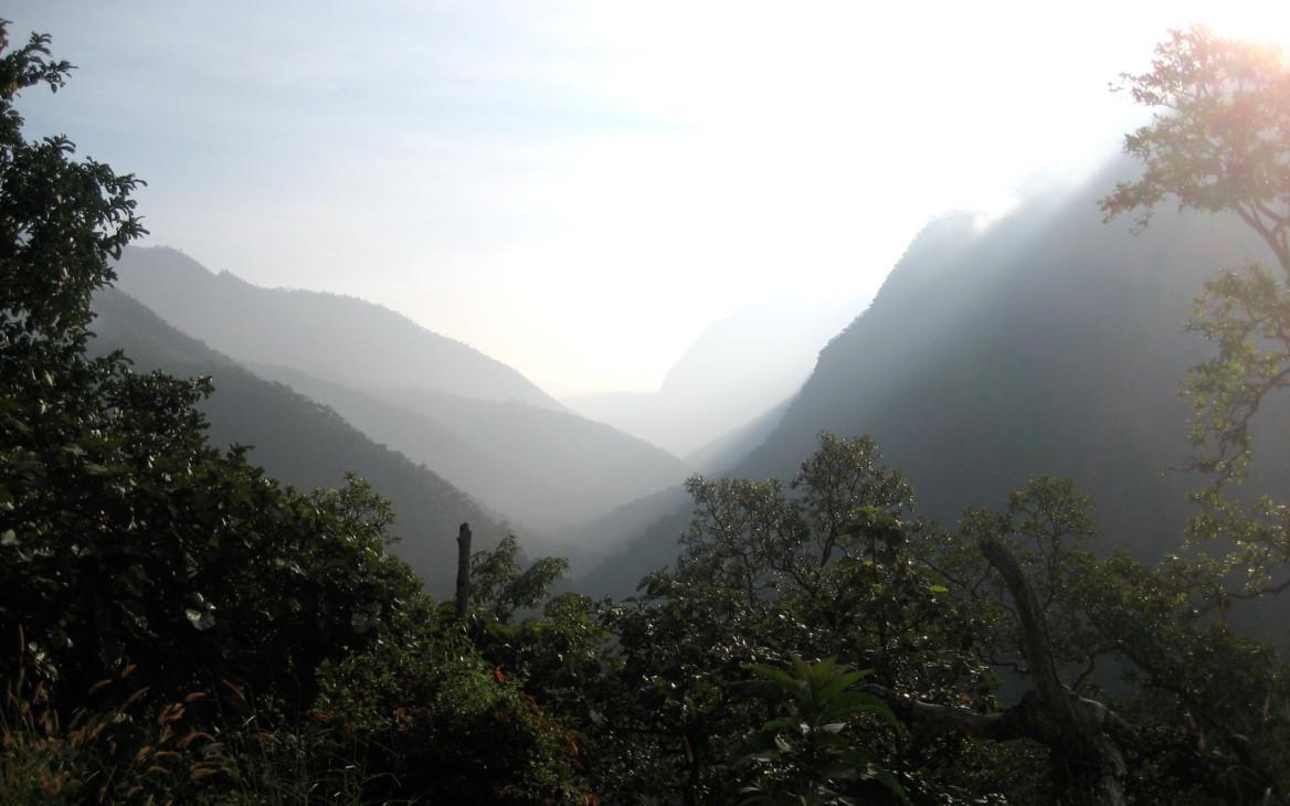 Freiwilligenarbeit Sri Lanka: Eine unvergessliche Reise