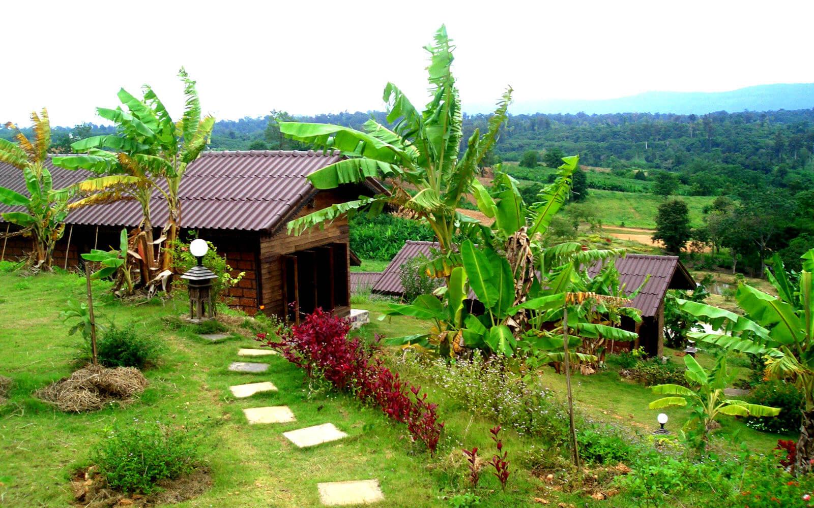 Landschaft auf Sri Lanka