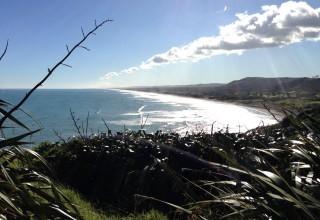 Sebastian in Neuseeland #3: Muriwai Beach, Rotorua und mehr!