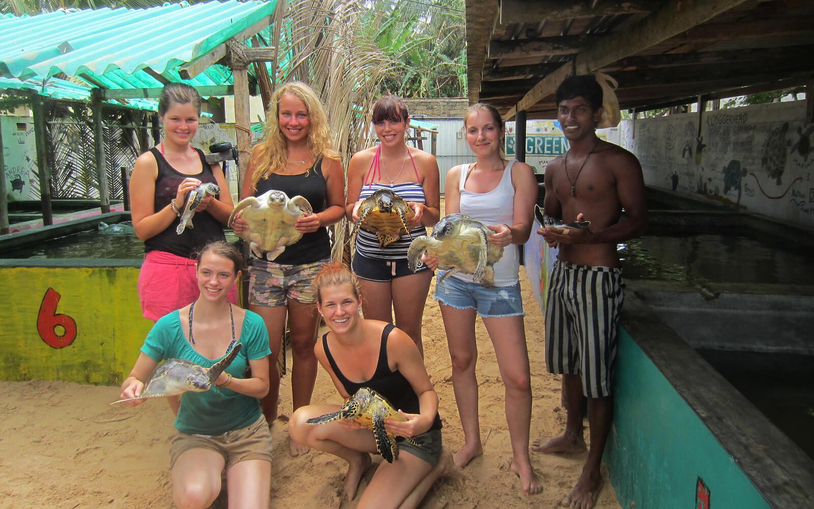 Corinna beim Schildkrötenprojekt in Sri Lanka