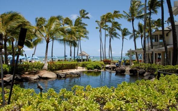 Hawaii: Palmen, Meer, Strand und Aloha-Zauber