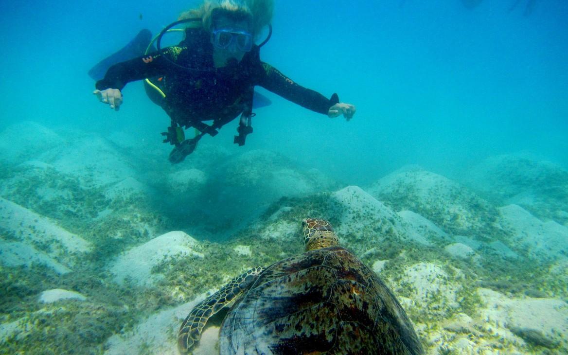 Anna entdeckt Australien: Ein Reisebericht