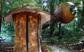 Ein Baumhaus in Kanada von flossieteacake