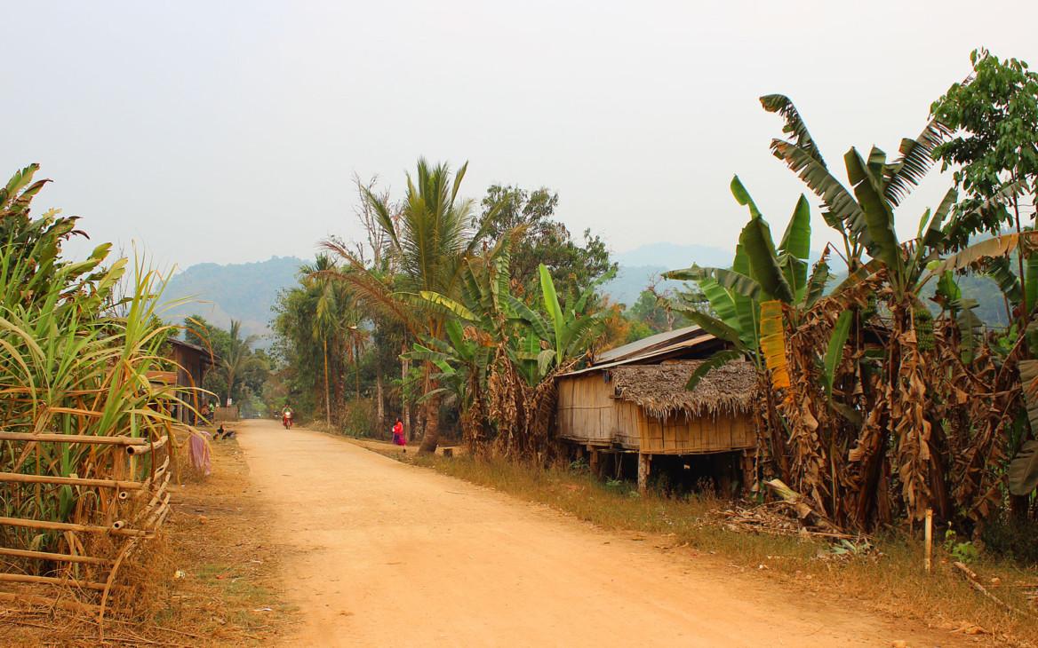 Malina in Asien #3: Im Reich der Elefanten