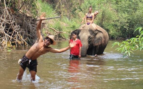 Freiwilligenarbeit in Asien: Ritt auf dem Elefanten
