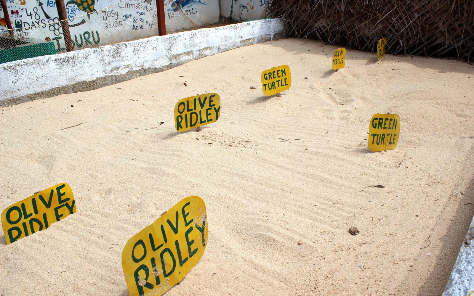 Beschildertes Sandbecken