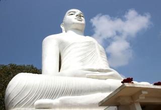 Malina in Asien #7: Kulturwoche in Sri Lanka