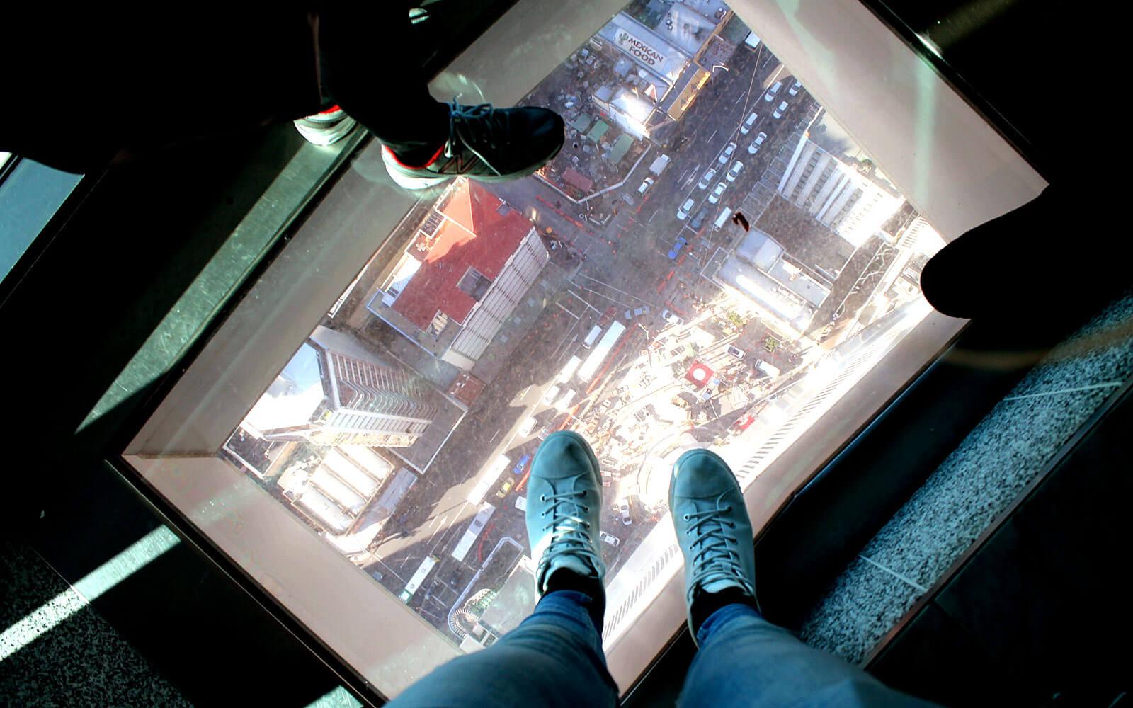 Weltneugier: Blick vom Aukland Skytower