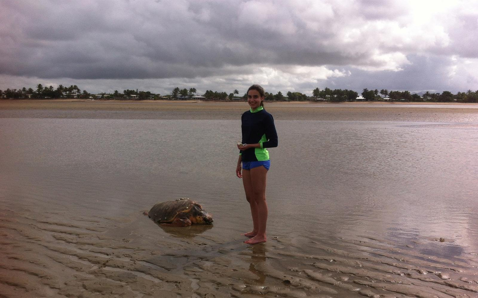 Vincenza Turtle