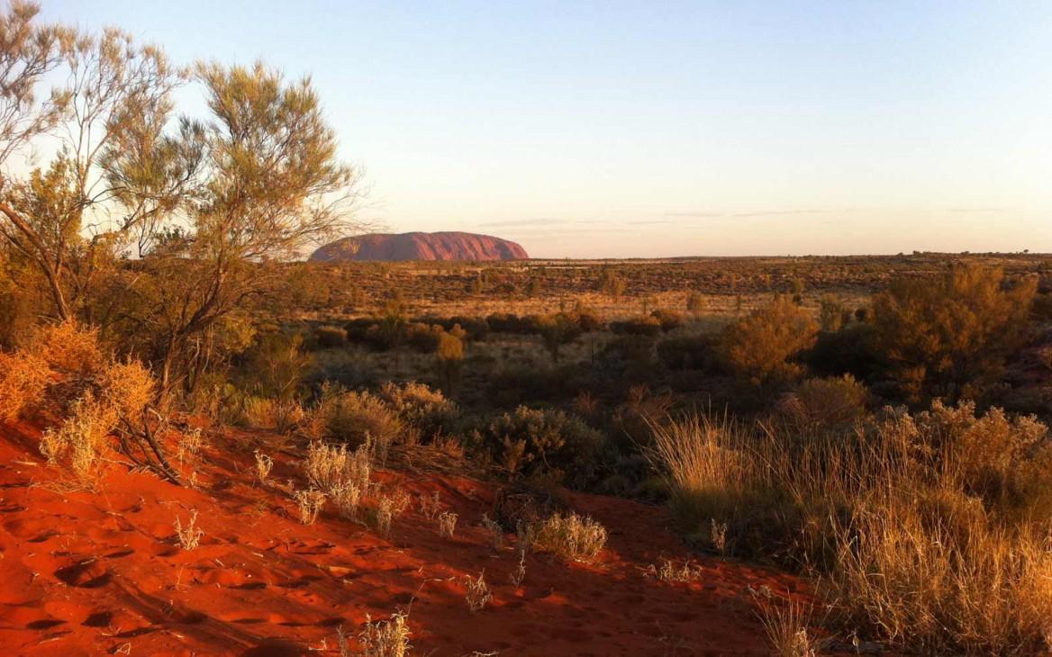 Vincenza in Australien #3: Im Herzen Australiens und am Great Barrier Reef