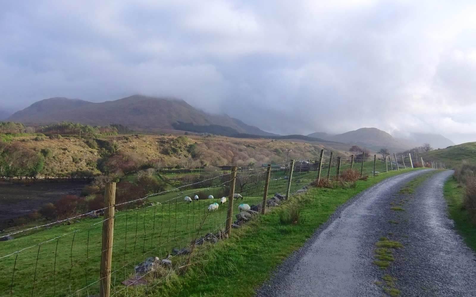 Landstraße in Irland