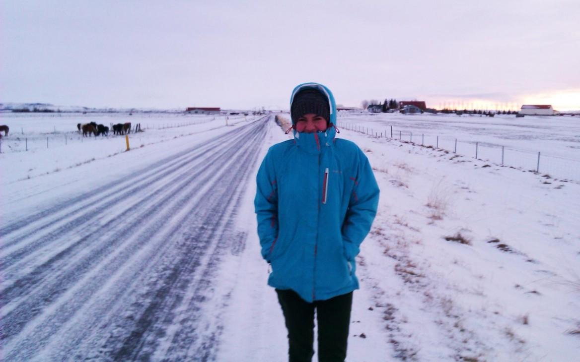 Erfahrungsbericht: Odas Farmarbeit in Island – Vom Schreibtisch in den Schafstall