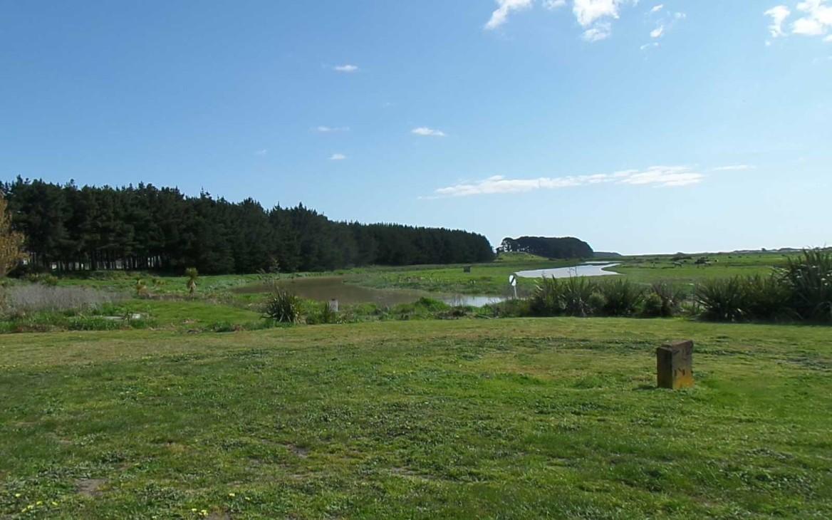 Myrna in Neuseeland #2: Endlich Frühling!