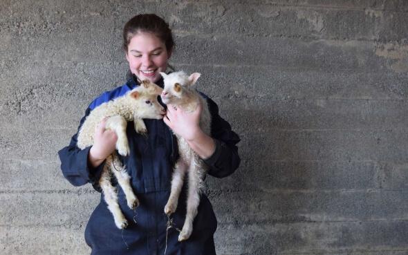 Farmhelferin Isabelle mit zwei Lämmchen im Arm in Island