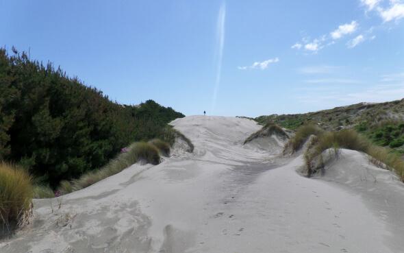 Dünenlandschaft in Neuseeland mit blauem Himmel