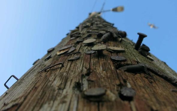 Vernagelter Strommast in Cork