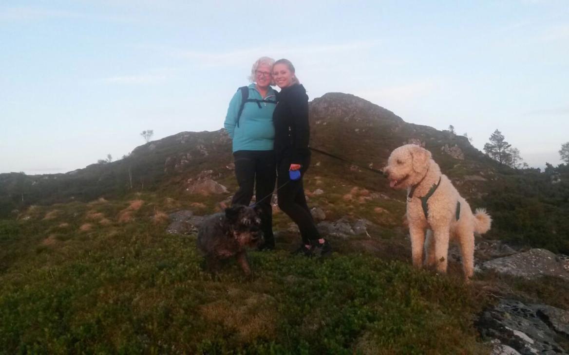 Farmarbeit Norwegen: Die Erfahrung meines Lebens