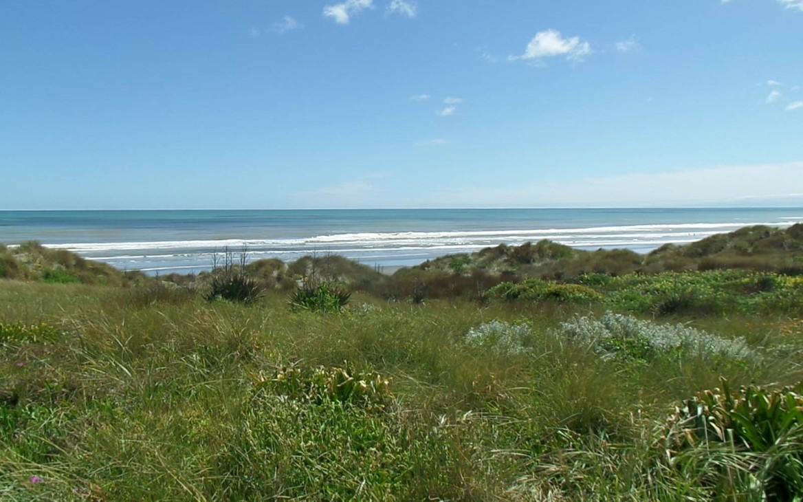 Myrna in Neuseeland #3: Von Spring Break, Labour Day & kulturellen Unterschieden